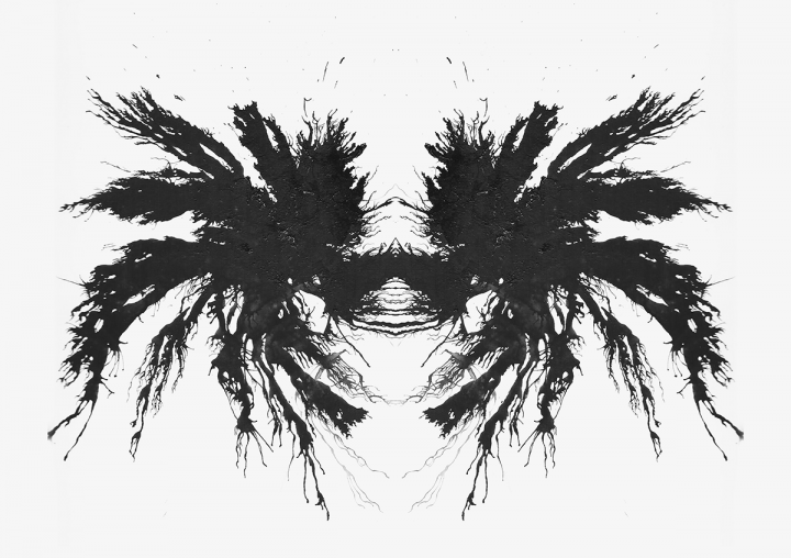 Download 13 Rorschach Stock Images