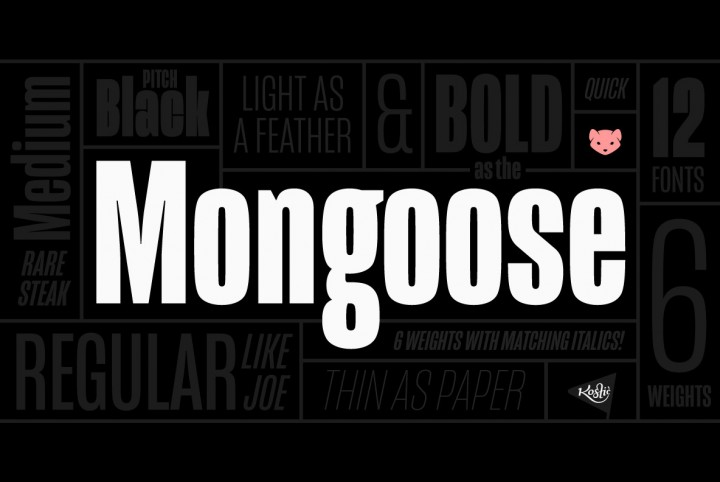 Kostic Type Foundry's Versatile Mongoose Font